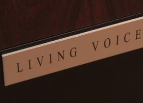 Living_Voice_OBX-RW_014_HiFi Philosophy